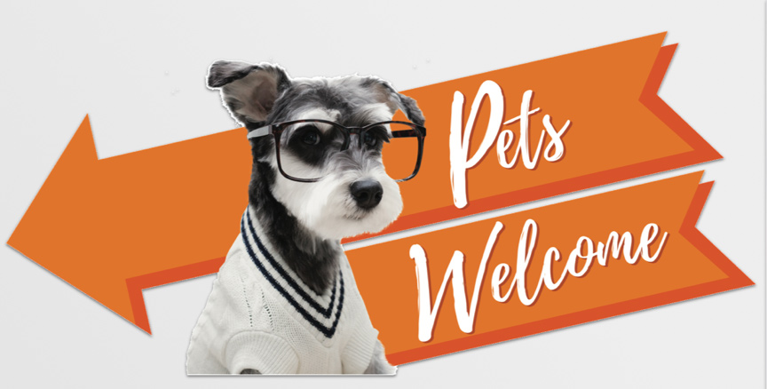 urban pet hipster dog welcome tag
